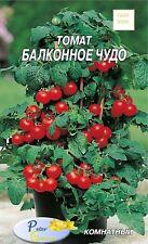 graines de tomates miracle de balcon rouge- Potager Légumes Plantes - 40 graines