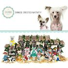 SAVANNASHOPS Dog Nativity Chinese Crested Gifts - Nativity Sets - Dog Love Gifts
