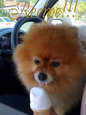 """Treats☆Doggie Ice Cream&Smoothie """"RECIPE""""☆Hommade~Like Frosty Paws☆Pampered Pets"""