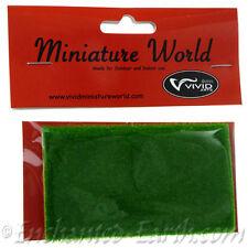 Vivid Arts - Miniature World- Small sheet of ARTIFICIAL grass for fairy gardens