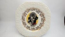 """Lord Nelson Pottery Dog Plate - Poodle - 8 1/2"""" Square"""
