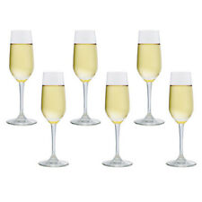 Ocean Glassware Lexington Flute 177ml Champagne Glass Set of 6