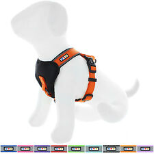 Pet Adjustable Reflective Padded Puppy / Dog Harness by Pawtitas