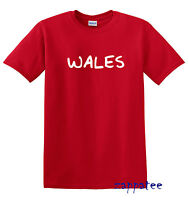 Children's WALES T Shirt Boys or girls Welsh tee All kids sizes Age 1-14