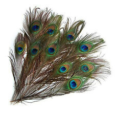 EG _ 10x qualité cadeaux DIY Paon Oeil queue plume pour Mascarade décoration par