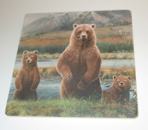 Brown Bears Trivet Stream Mountain Cork Backing New Coaster Stone