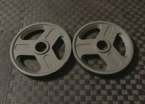 """25lb Olympic 2"""" Weight Plates Pair 50lbs Total- Barbell Weights Brand New!"""