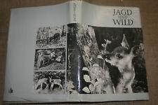 Fachbuch Förster, Jagd, Wild, Jäger, Federwild, Jagdwaffen, Jagdarten, DDR 1969
