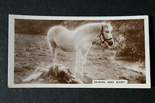 Horse and Dog  Humourous 1930's Original Vintage Photo Card  # VGC