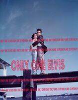 "1958 ELVIS PRESLEY in the MOVIES ""KING CREOLE"" PHOTO Pier Scene CAROLYN JONES"