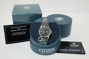 Citizen Eco-Drive Watch WR100 with Box Canvas Strap 100m Water Resistant