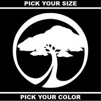 Arbor Collective Vinyl Sticker / Decal * Skateboard * Snowboard * Splitboard *