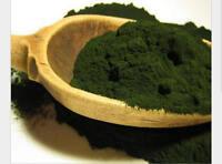 100% Pure Organic Spirulina Powder NonGMO NonIRRADIATED Nutrient Rich Superfood