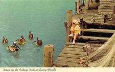 FL, Florida  LITTLE BOY IN SAILOR HAT on DOCK~Kitten~Pelicans   Chrome Postcard