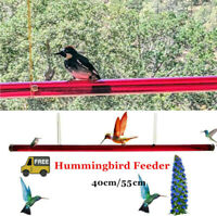 Anna's Best Hummingbird Feeder with Hole Bird Feeding Pipes Easy to Use Outdoor