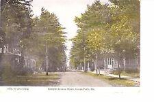 Ocean Park, Maine   Temple Avenue Pines  @ 1910-15