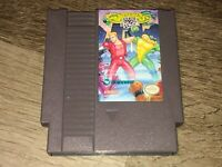 Battletoads / Double Dragon Ultimate Team Nintendo Nes Cleaned Tested Authentic