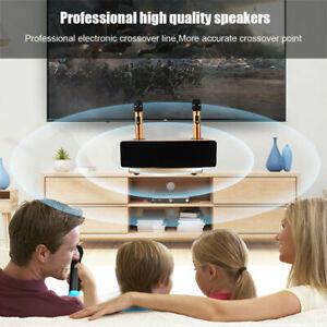 Karaoke Sound Professional Home Audio Set Machine Portable Wireless Mic ASN
