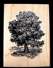 Oak Tree rubber stamp WM 3x2.25""