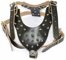 Dog Harness -Quality Leather Plain Black Spiked&Studded Dog Collar Harness Vest