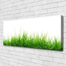Leinwand-Bilder Wandbild Canvas Kunstdruck 125x50 Gras Natur