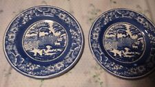 Pair of Staffordshire Engravings Wild Rose Salad Plate