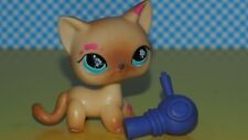 Littlest Pet Shop  Set   LPS  816