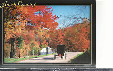 Ohio  Amish Country   Becks Mills in Autumn    4x6 Chrome Postcard 664