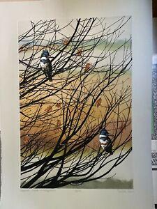 Channel Watch Kingfishers - Sueellen Ross Limited edition print (1991)