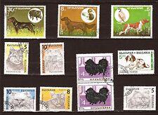 348 BULGARIE  10 timbres oblitérés: Chiens et Chats de races diverses