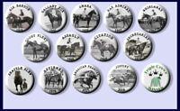 Triple Crown Racehorses Race Horse Winners Pinback buttons badges pins Set of 14