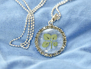 JEWELLERY PENDANT REAL FOUR LEAF CLOVER  ROUND