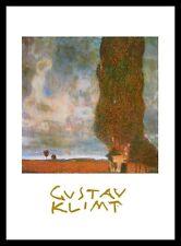 Gustav Klimt Hohe Pappeln Poster Bild Kunstdruck im Alu Rahmen schwarz 50x70cm