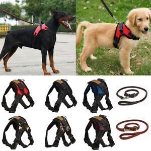 Hundegeschirr Brustgeschirr Einstellbar Bequem für mittelgroße und große Hunde