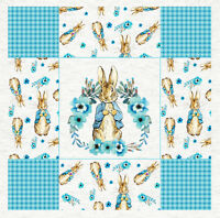Peter Rabbit - Gingham Effect,  Fabric Cushion Upholstery Craft Quilting Panel