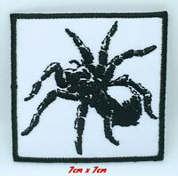 Spider animal badge Iron Sew on Embroidered Patch applique #802