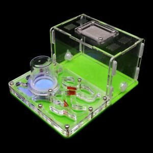 Green Acrylic Ant Farm Ant Nest Ant House for Pet Anthill Glass Moisturizing