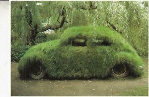 RARE GREEN GRASS BEETLE BUG  VW VOLKSWAGEN  POSTCARD - AMSTERDAM ART GROOVY