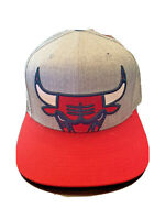 Mitchell & Ness Chicago Bulls Mens Gray Red adjustable Snapback NBA Hat
