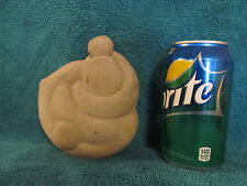Large Fairy Stone - Turtle Stone Rock Concretion - A1