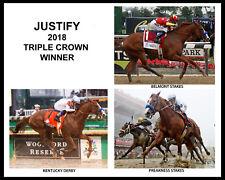 JUSTIFY, Triple Crown Winner - 2018, 8x10 Color Photo