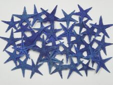 "90 PCS DYED BLUE TAN FLAT STARFISH STAR SEA SHELL BEACH 3/4"" - 1 1/4"" #7602"