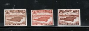 Newfoundland #25Pi #25Pii #25TCi Very Fine Proof Trio On India Paper In 3 Shades