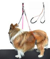 Dog Grooming Loop No Sit Haunch Holder Grooming Restraint by Gravitis Pet Line