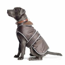 Articles marrons pour chien sans offre groupée personnalisée
