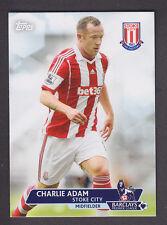 Topps Premier Gold 2013 - Base # 74 Charlie Adam - Stoke