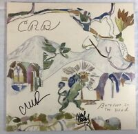 CHRIS ROBINSON HAND SIGNED BAREFOOT IN THE HEAD CRB AUTOGRAPHED RARE AUTHENTIC