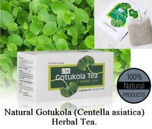 Caffeine Free Gotukola Herbal Tea Premium Energizer 20 bags Superfood Extract
