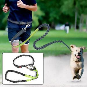 Einstellbare Joggingleine Walkingleine Hundeleine Wanderleine mit Bauchgurt