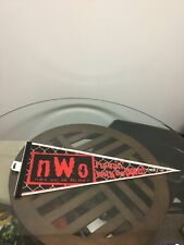 New Vintage WCW NWO New World Order Runnin With The Pack Wrestling Pennant Flag
